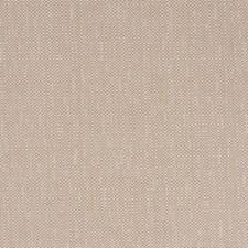 Cameo Texture Plain Decorator Fabric by Fabricut