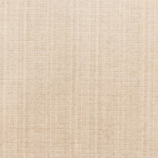 Putty Solid Decorator Fabric by Fabricut