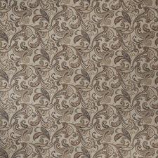 Driftwood Paisley Decorator Fabric by Fabricut
