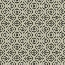 Ebonist Contemporary Decorator Fabric by S. Harris