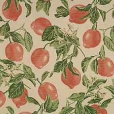 Persimmon Jacquard Pattern Decorator Fabric by Vervain