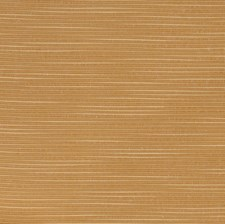 Ginger Solid Decorator Fabric by Trend