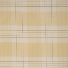 Honeysuckle Check Decorator Fabric by Trend