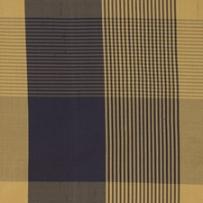 Sailor Check Decorator Fabric by Trend
