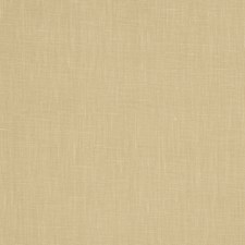 Raffia Solid Decorator Fabric by Trend