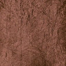 Mole Solid Decorator Fabric by Trend