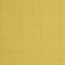 Dijon Solid Decorator Fabric by Trend