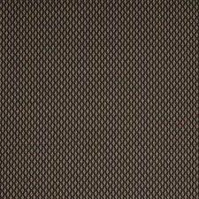 Hunter Decorator Fabric by Robert Allen