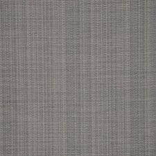 Shark Decorator Fabric by RM Coco