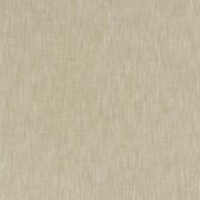 Raffia Solid Decorator Fabric by Fabricut