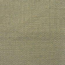 Aloe Decorator Fabric by RM Coco
