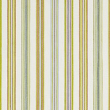 Palm Beach Decorator Fabric by Robert Allen /Duralee