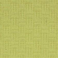 Citron Decorator Fabric by Robert Allen/Duralee