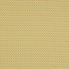 Hay Decorator Fabric by Robert Allen