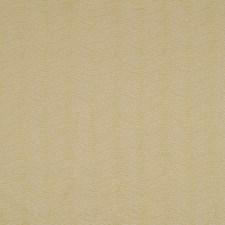 Sunlight Decorator Fabric by Robert Allen