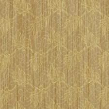 Coin Decorator Fabric by Robert Allen