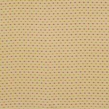 Lemondrop Decorator Fabric by Robert Allen