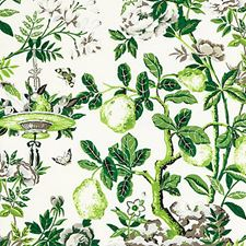 Verdance Decorator Fabric by Scalamandre