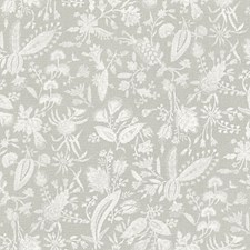 French Grey Decorator Fabric by Scalamandre