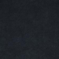 Wintergreen Decorator Fabric by Robert Allen