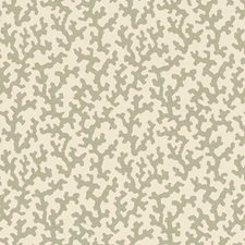 Sage Decorator Fabric by Schumacher