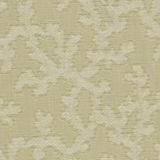 Sand Dollar Decorator Fabric by Robert Allen/Duralee