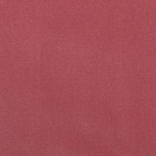 Pink Decorator Fabric by Highland Court