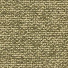 Tarragon Decorator Fabric by Robert Allen /Duralee