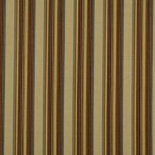 Earth Decorator Fabric by Robert Allen /Duralee