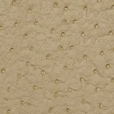Parchment Decorator Fabric by Robert Allen