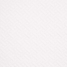 White Decorator Fabric by Robert Allen