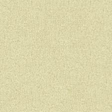 Oyster Velvet Decorator Fabric by Lee Jofa