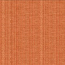 Apricot Solids Decorator Fabric by Lee Jofa