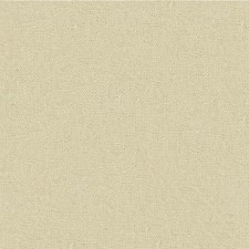 Silver Solids Decorator Fabric by Lee Jofa