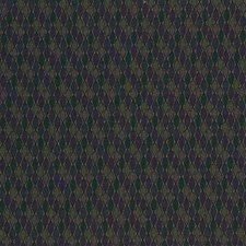 Green/Purple Decorator Fabric by Kravet