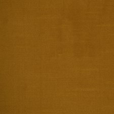 Cashew Decorator Fabric by Robert Allen