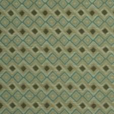 Aloe Decorator Fabric by Robert Allen /Duralee