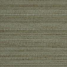 Rainshower Decorator Fabric by Robert Allen /Duralee