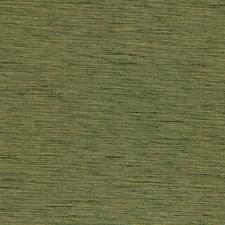 Fern II Decorator Fabric by Robert Allen