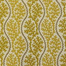 Seaweed Decorator Fabric by B. Berger