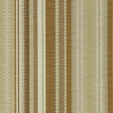 Vanilla Decorator Fabric by Robert Allen /Duralee