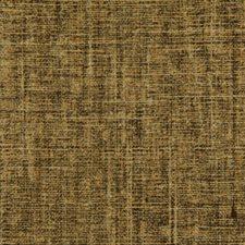 Penny Decorator Fabric by Robert Allen