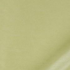 Honeydew Decorator Fabric by Robert Allen/Duralee