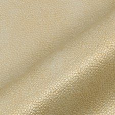 Gold Taupe Decorator Fabric by Robert Allen