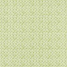 Chartreuse Decorator Fabric by Robert Allen