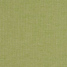 Fresh Grass Decorator Fabric by Robert Allen
