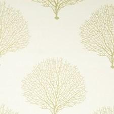 Sunray Decorator Fabric by Robert Allen/Duralee