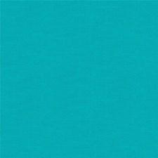 Bimini Solid Decorator Fabric by Kravet