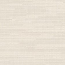 Pale Cream Decorator Fabric by Robert Allen