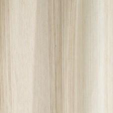 Whitewash Decorator Fabric by Robert Allen/Duralee